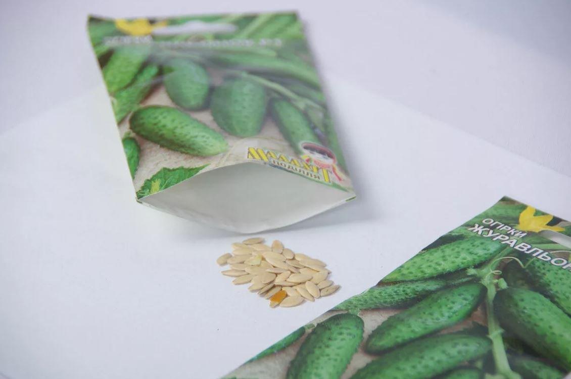 Cрок годности семян огурцов